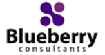 Blueberry-consultants-ltd